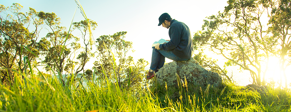 A man reading a book on a rock in a grassy field