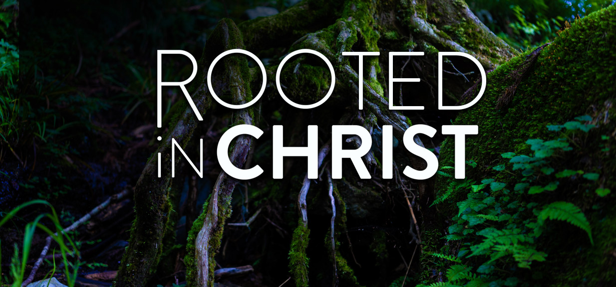 Rooted in Christ Sermon Series